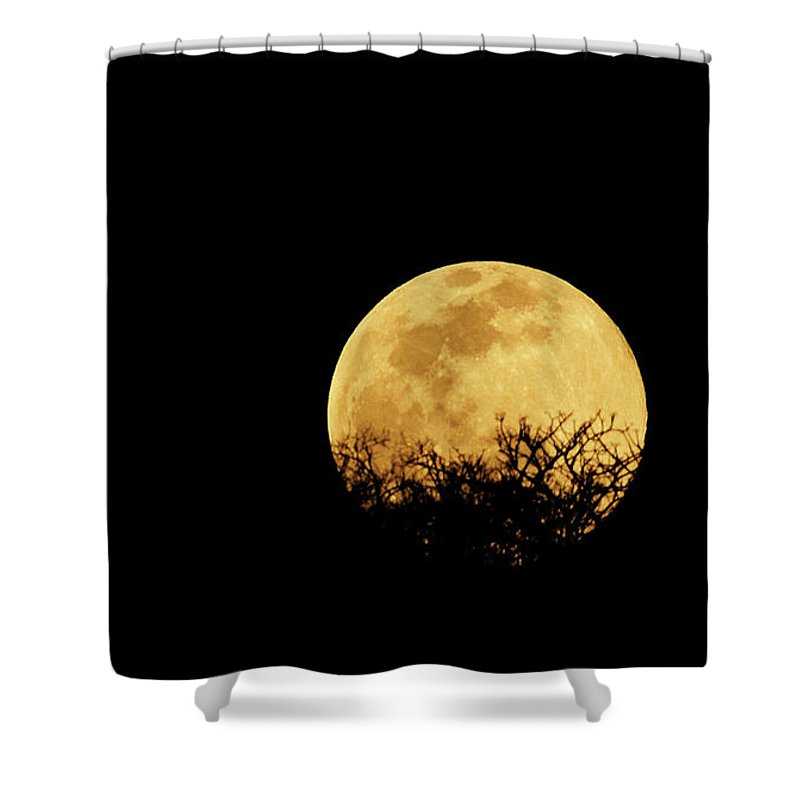 Horror Shower Curtain featuring the photograph Moon Rise by Rollingearth