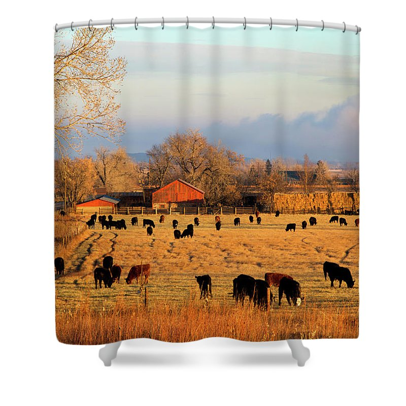 Scenics Shower Curtain featuring the photograph Morning Farm Scene by Beklaus