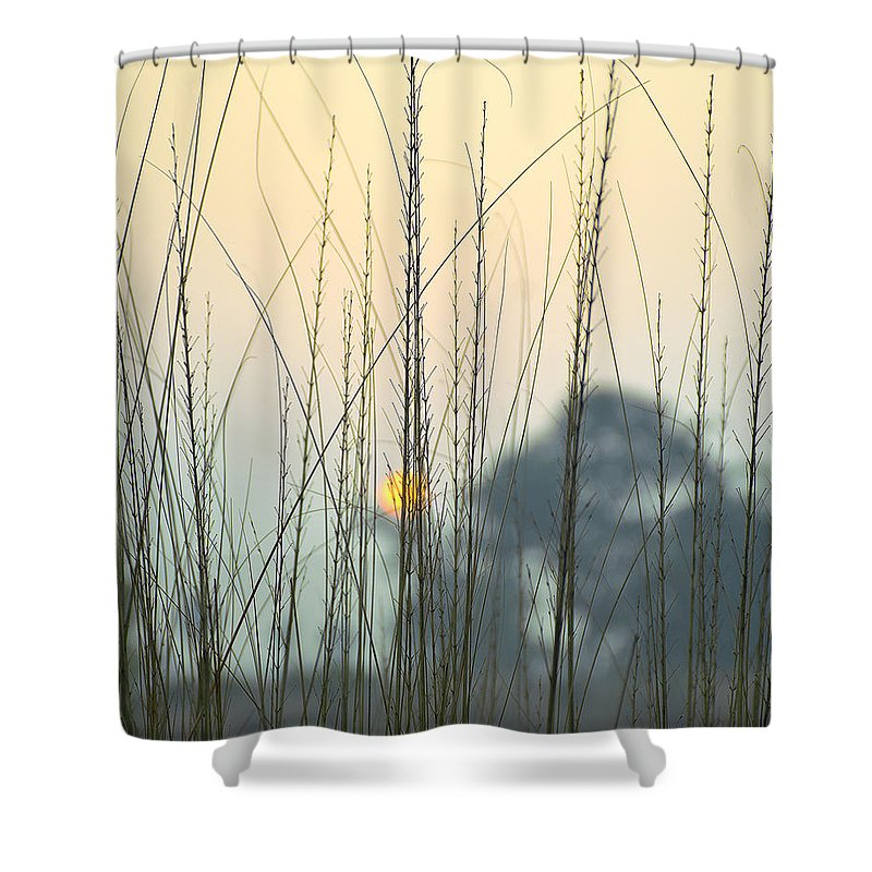 Grass Shower Curtains