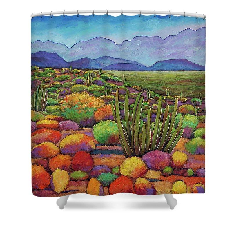 Desert Landscape Shower Curtains