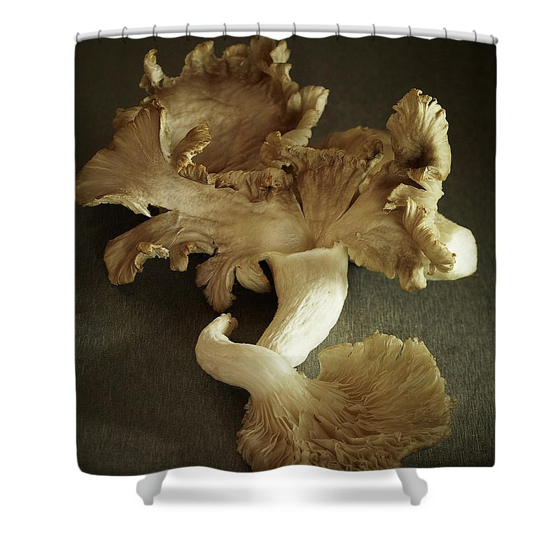 Edible Mushroom Shower Curtain featuring the photograph Oyster Mushrooms Still Life by Carin Krasner