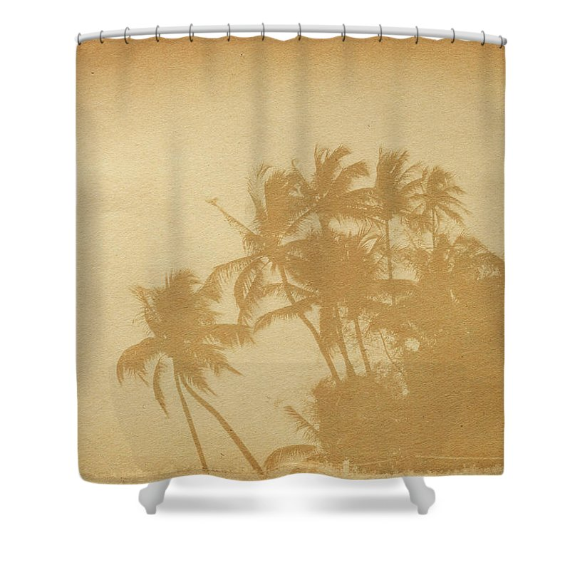 Aging Process Shower Curtain featuring the photograph Palm Paper by Nic taylor