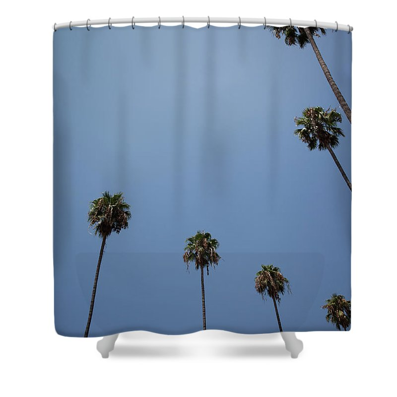 Tranquility Shower Curtain featuring the photograph Palm Trees by Tuan Tran
