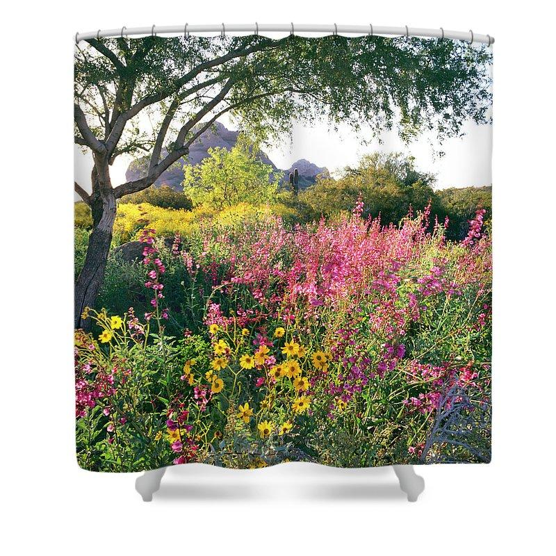 Scenics Shower Curtain featuring the photograph Phoenix Botanical Gardens by Richard Felber