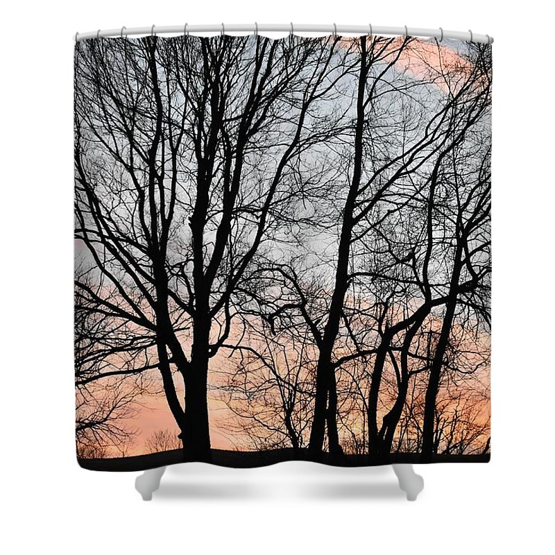 Trees Shower Curtain featuring the photograph Pink Sky by Cassidy Marshall