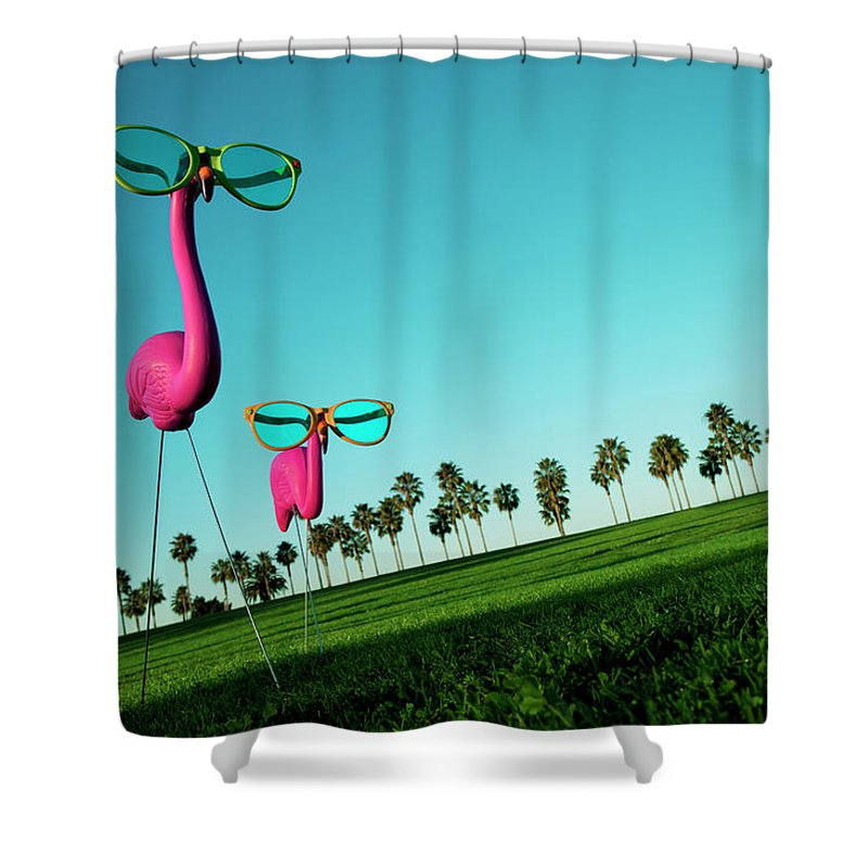 Artificial Shower Curtain featuring the photograph Plastic Pink Flamingos On A Green Lawn by Skodonnell