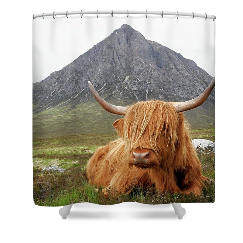 Horned Shower Curtain featuring the photograph Quintessential Scotland by Thedman