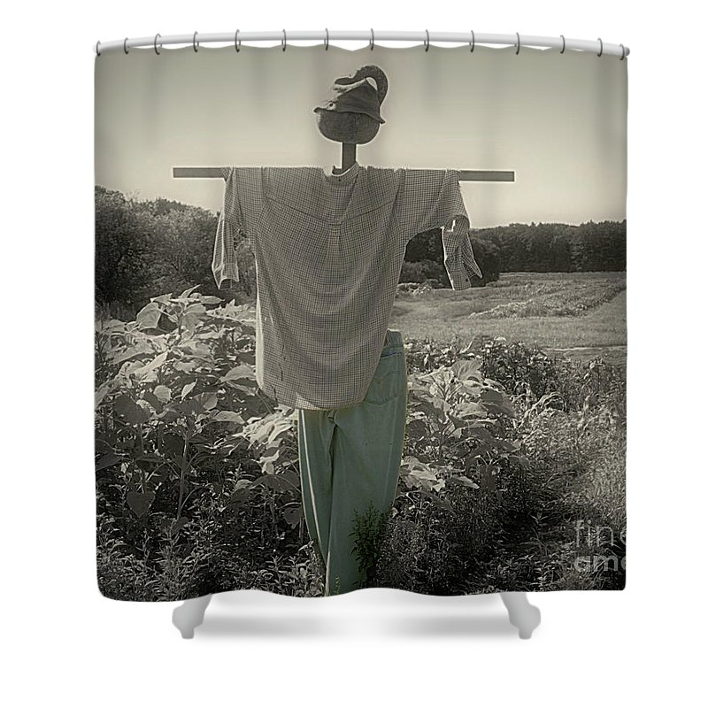 Scarecrow Shower Curtain featuring the photograph Scarecrow by Smilin Eyes Treasures