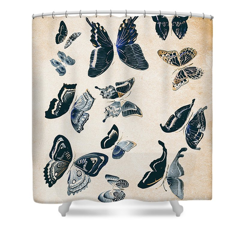 Antique Shower Curtain featuring the photograph Scrapbook Butterflies by Jorgo Photography - Wall Art Gallery