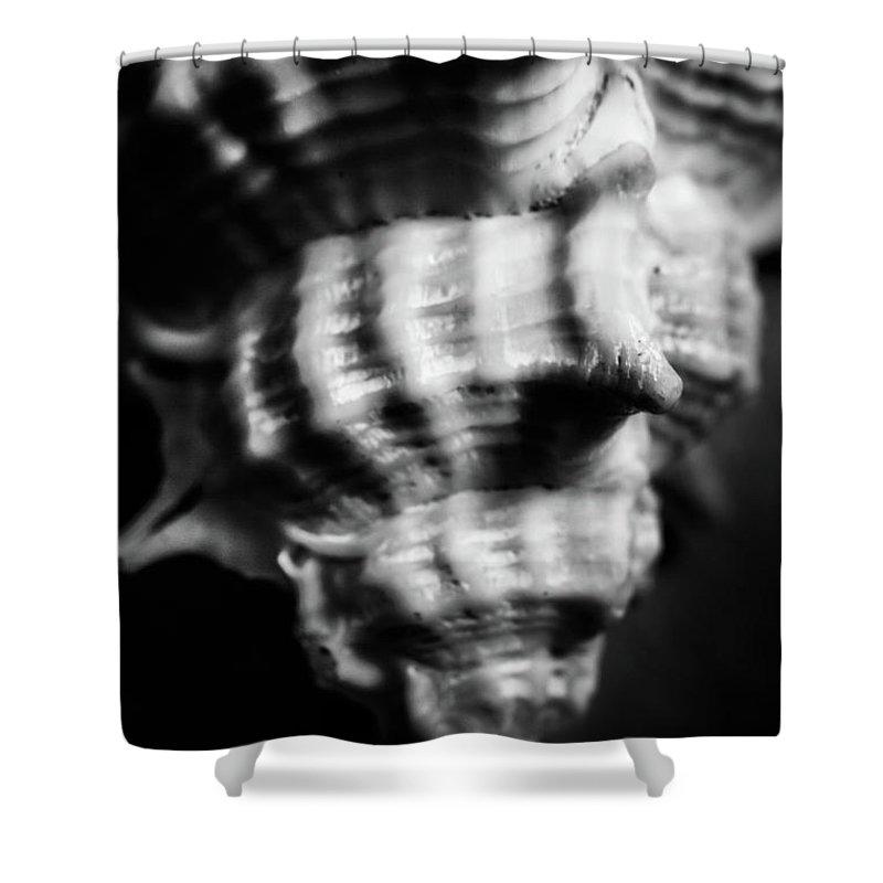 Grey Background Shower Curtains