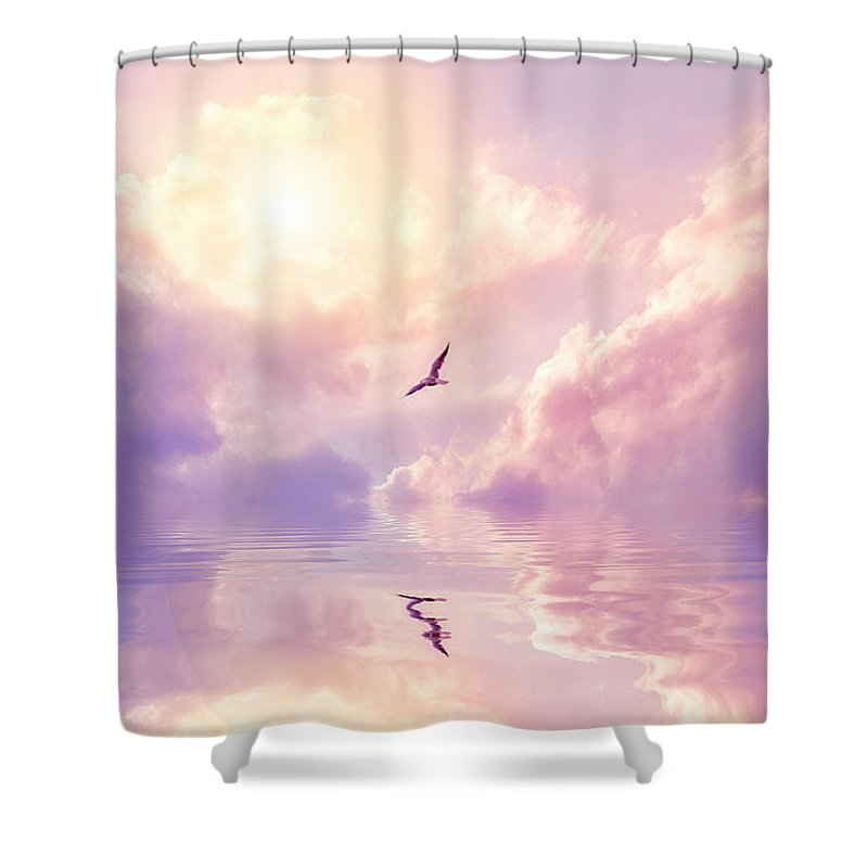 Fairy Tale Shower Curtain featuring the photograph Seagull And Violet Clouds by Jane Khomi