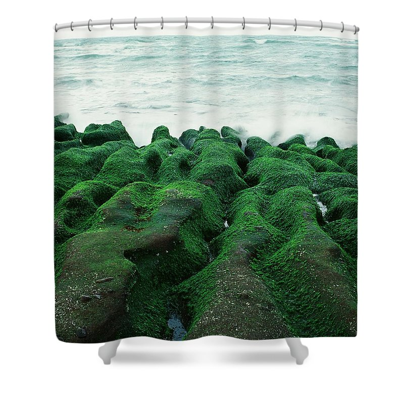 Scenics Shower Curtain featuring the photograph Seaweed by Tsun