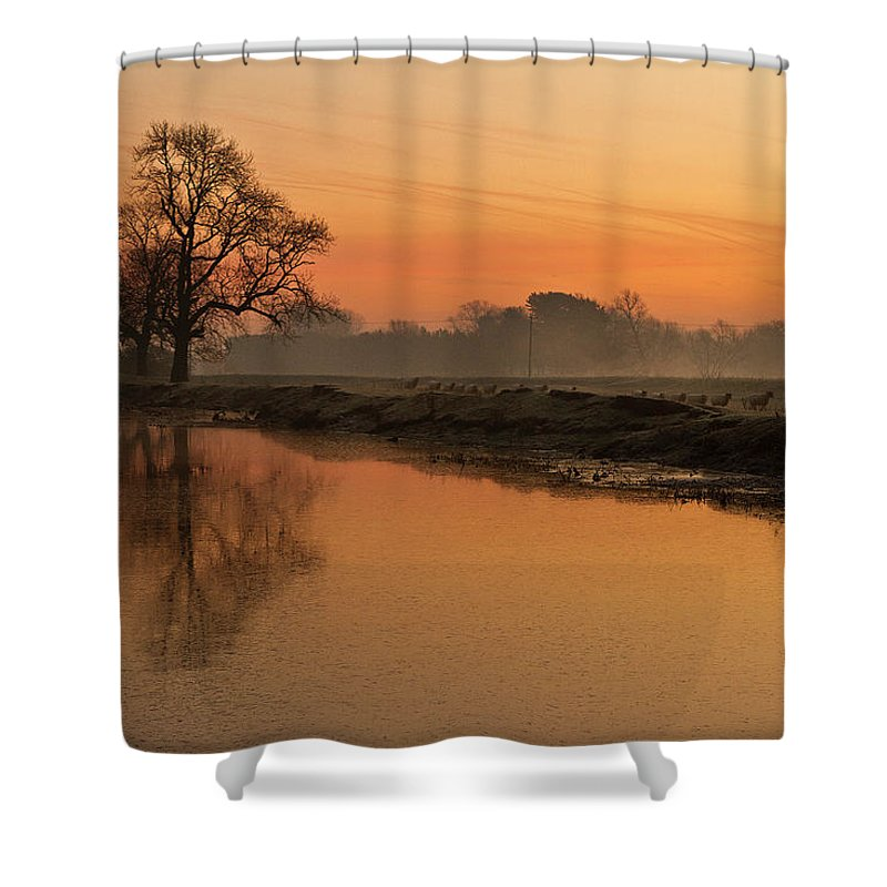 Scenics Shower Curtain featuring the photograph Sheep Sunrise by Paulscreen