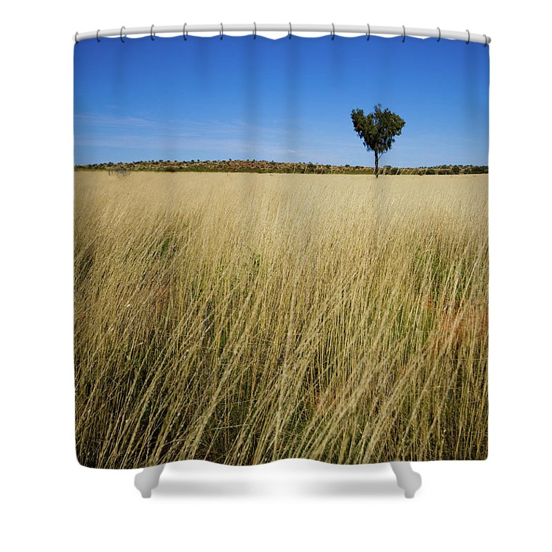 Scenics Shower Curtain featuring the photograph Small Single Tree In Field by Universal Stopping Point Photography