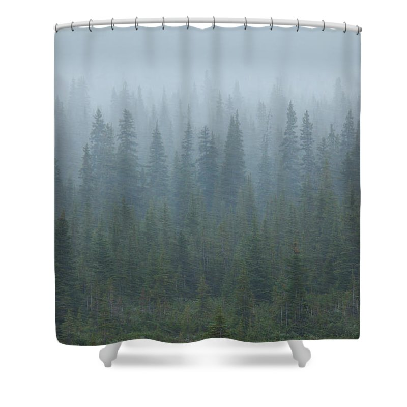Unesco Shower Curtain featuring the photograph Snow Storm In The Forests Of Jasper by Mint Images/ Art Wolfe