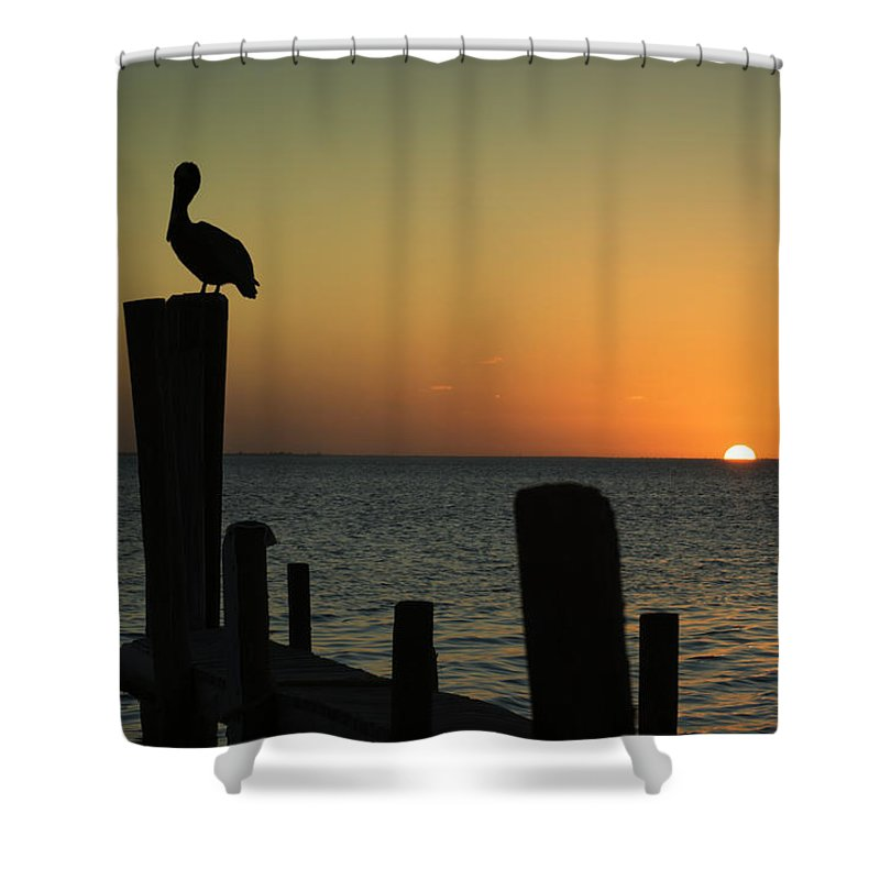 Orange Color Shower Curtain featuring the photograph South Padre Island, Texas Sunset With by Yangyin