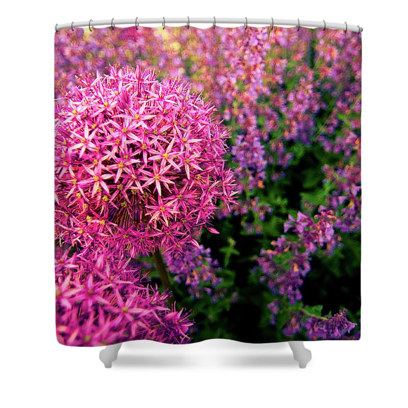 Purple Shower Curtain featuring the photograph Spring Flowers In Garden by Flash Parker