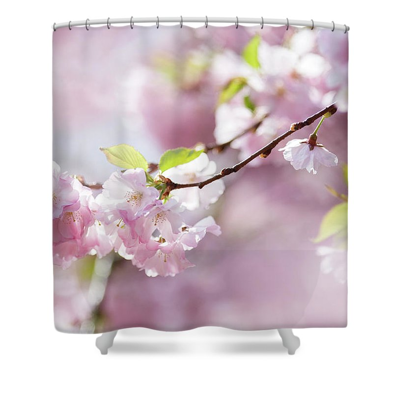 People Shower Curtain featuring the photograph Spring by Goldhafen
