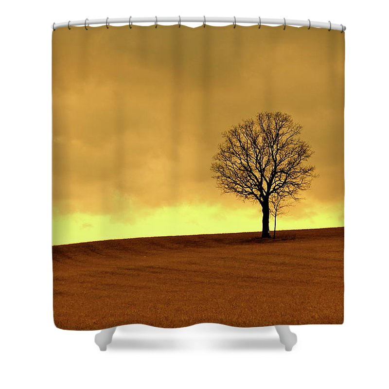 Scenics Shower Curtain featuring the photograph Tree On Hillside At Dusk Sepia by Driftless Studio