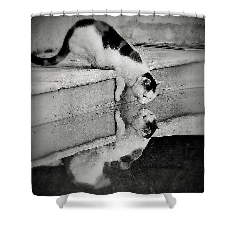 Pets Shower Curtain featuring the photograph Two In One by Hélène Desplechin