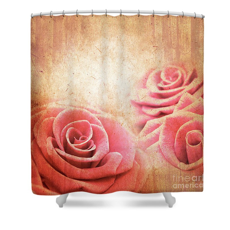 Rose Shower Curtain featuring the photograph Vintage Roses by Delphimages Photo Creations