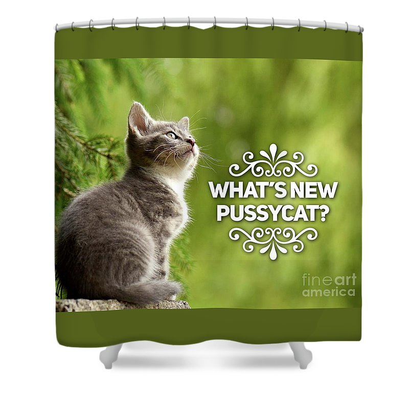 Pussycat Shower Curtain featuring the digital art Whats New Pussycat by Esoterica Art Agency