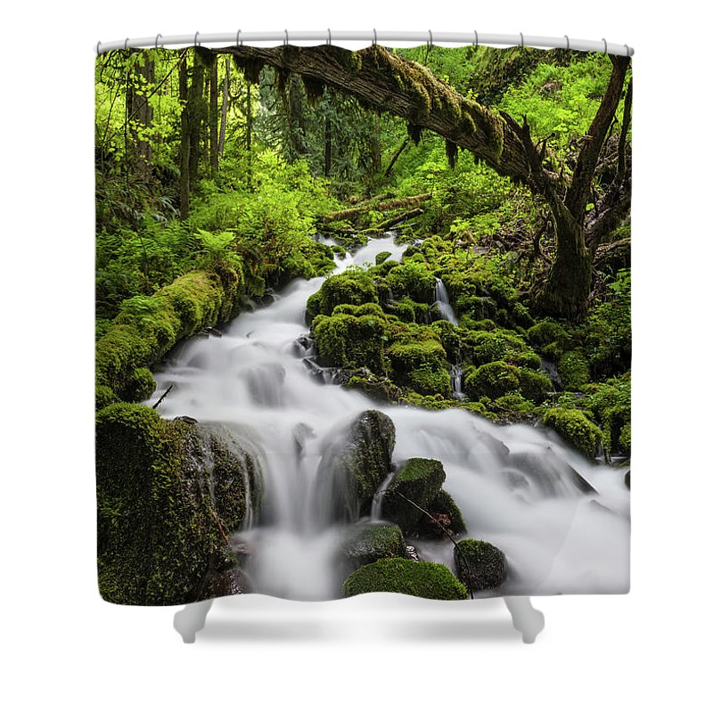 Scenics Shower Curtain featuring the photograph Wild Forest Waterfall Idyllic Green by Fotovoyager