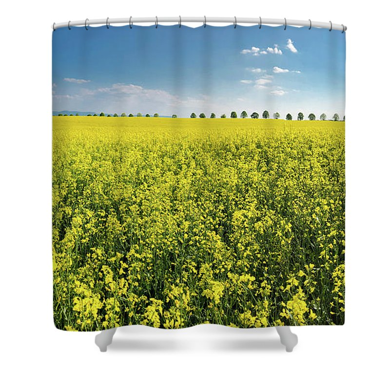 Canola Shower Curtain featuring the photograph Yellow Canola Field And Blue Sky Spring Landscape by Matthias Hauser
