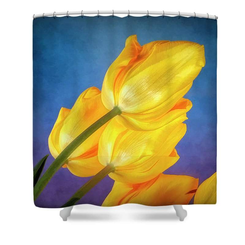 Flower Shower Curtain featuring the photograph Yellow Tulips On Blue by Tom Mc Nemar