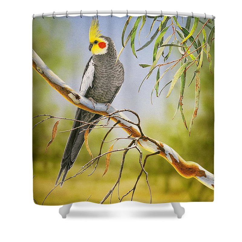 Bird Shower Curtain featuring the painting A Friendly Face - Cockatiel by Frances McMahon