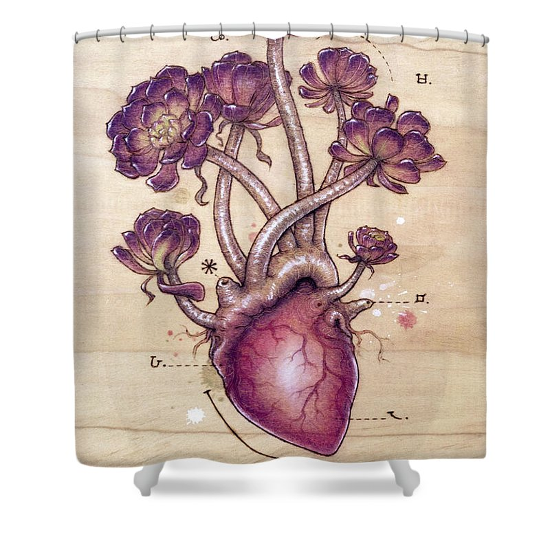 Pyrography Shower Curtain featuring the pyrography Aeonium Heart by Fay Helfer