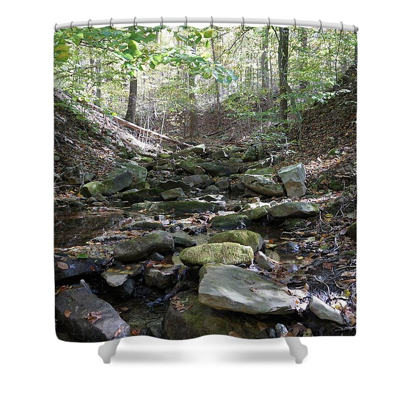 Fall Foliage Shower Curtain featuring the photograph Bark Rocks 6 by Chris Naggy