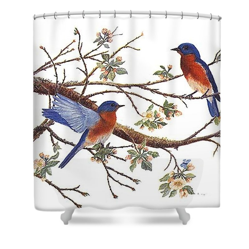 Bluebirds Shower Curtain featuring the painting Bluebirds And Apple Blossoms by Ben Kiger