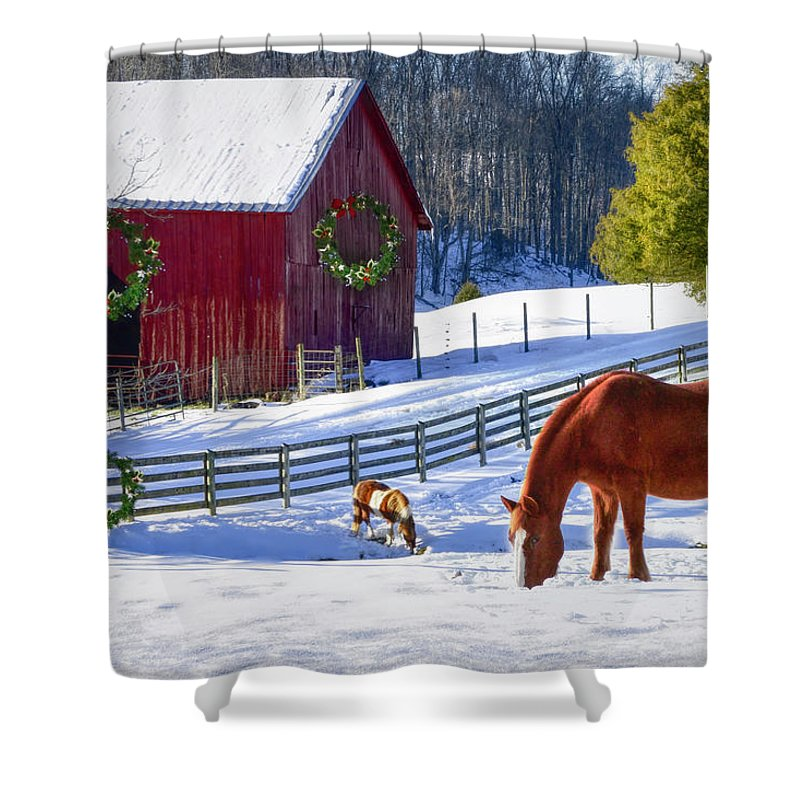 Animals Shower Curtain featuring the photograph Christmas Horse Farm by Debra and Dave Vanderlaan