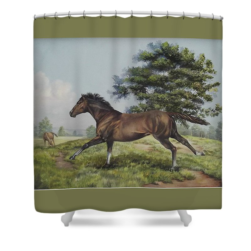 Horse In Field Shower Curtain featuring the painting Energy To Burn by Wanda Dansereau