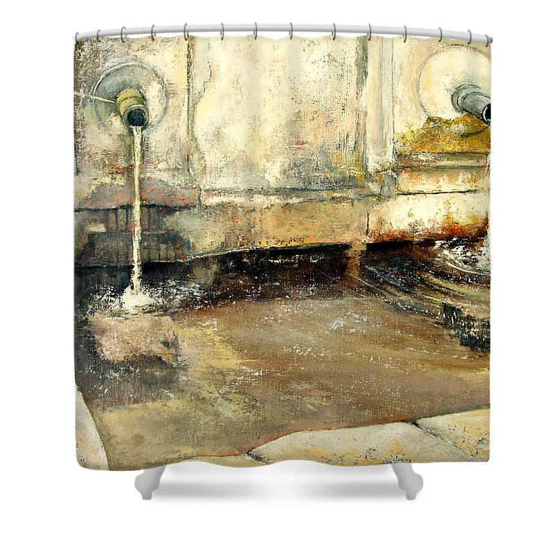 Fuente Shower Curtain featuring the painting Fuente by Tomas Castano