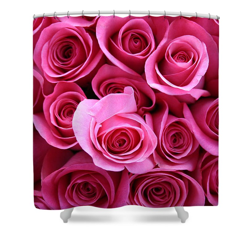 Pink Roses Shower Curtain featuring the photograph Grandma Roses by Linda Sannuti