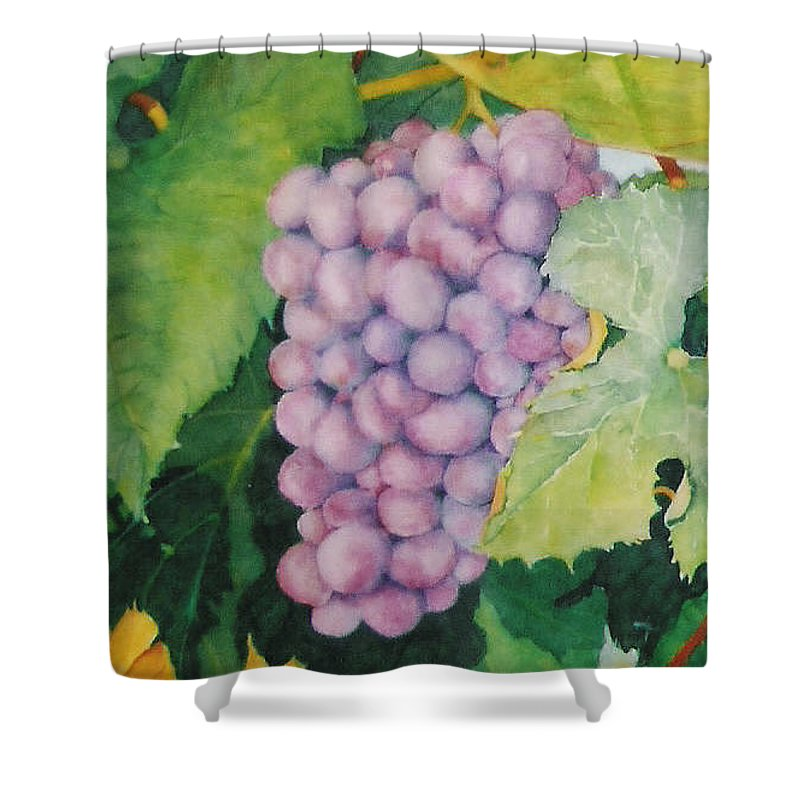Grapes Shower Curtain featuring the painting Grapes by Mary Ellen Mueller Legault