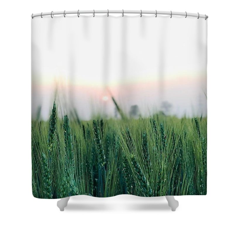Lanscape Shower Curtain featuring the photograph Greenery by Prashant Dalal