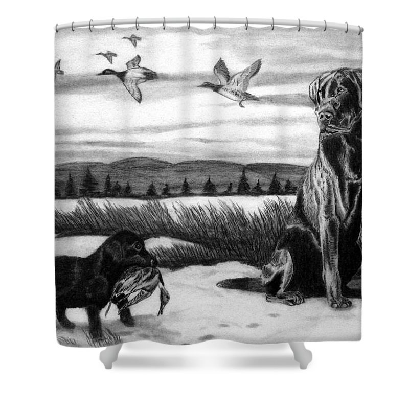 In Training Shower Curtain featuring the drawing In Training by Peter Piatt