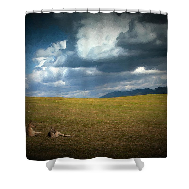 Eastern Grey Kangaroos Shower Curtain featuring the photograph Kangaroos and approaching storm by Sheila Smart Fine Art Photography