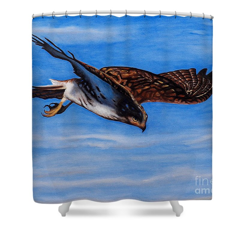 Hawk Shower Curtain featuring the painting Keen Eye Bold Heart by Brian Commerford