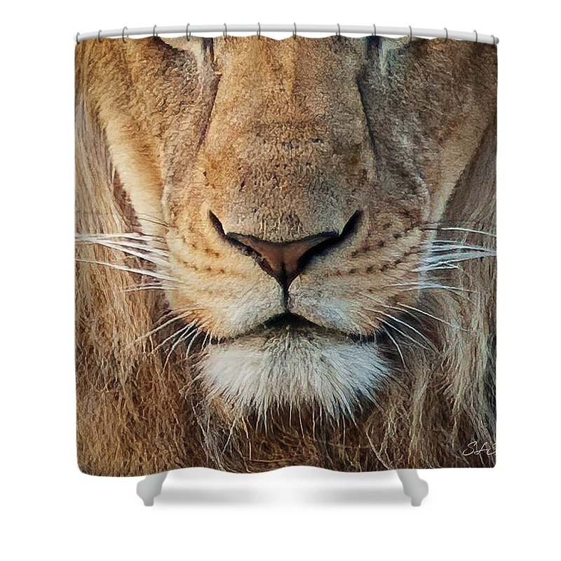 Lion Shower Curtain featuring the photograph Lion by Steven Sparks