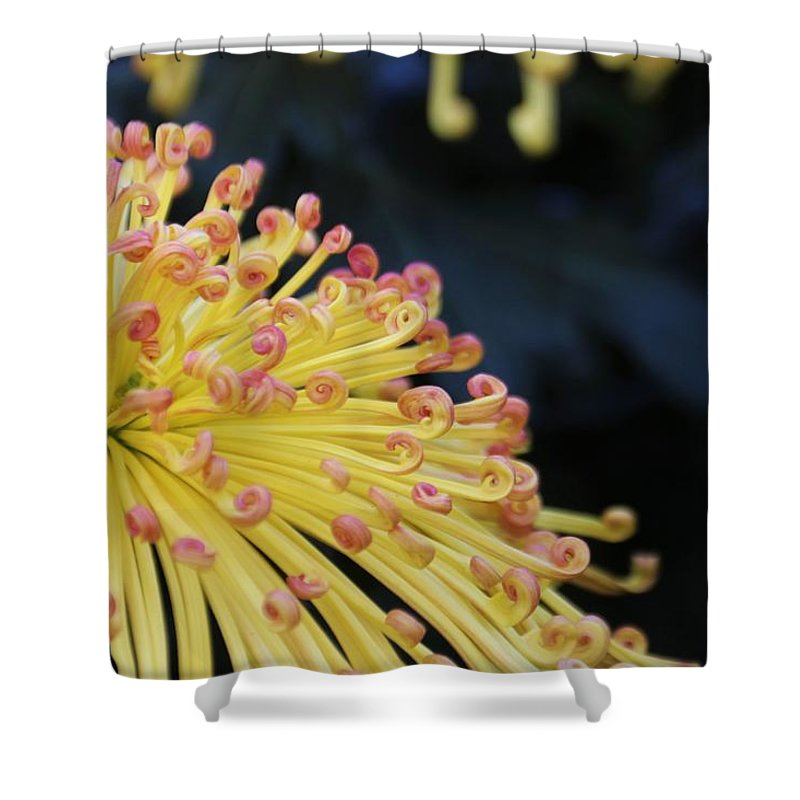 Nature Shower Curtain featuring the photograph Mum's Not The Word by Larry Kniskern
