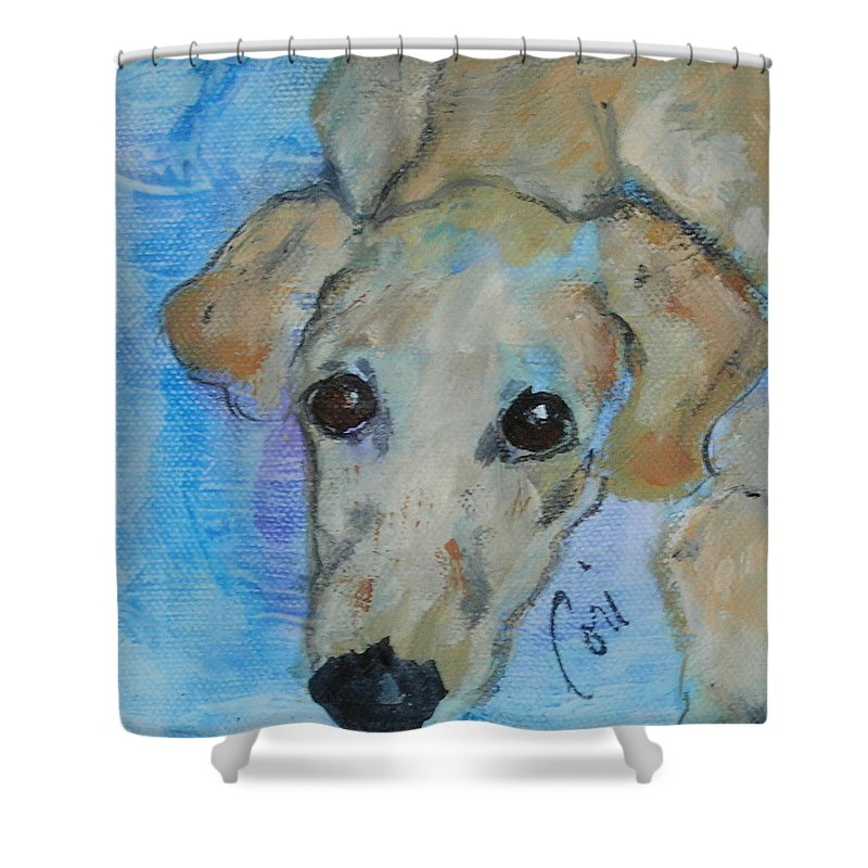 Acrylic Shower Curtain featuring the drawing Pupster by Cori Solomon
