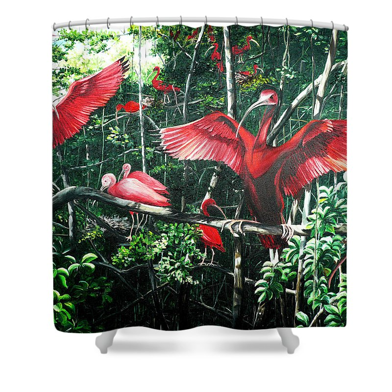 Caribbean Painting Scarlet Ibis Painting Bird Painting Coming Home To Roost Painting The Caroni Swamp In Trinidad And Tobago Greeting Card Painting Painting Tropical Painting Shower Curtain featuring the painting Scarlet Ibis by Karin Dawn Kelshall- Best