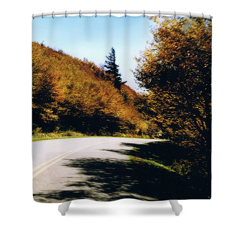 High In The Great Smoky Mtn. As You Round A Curve Stands This Noble Spruce. Shower Curtain featuring the photograph Single Spruce by Seth Weaver