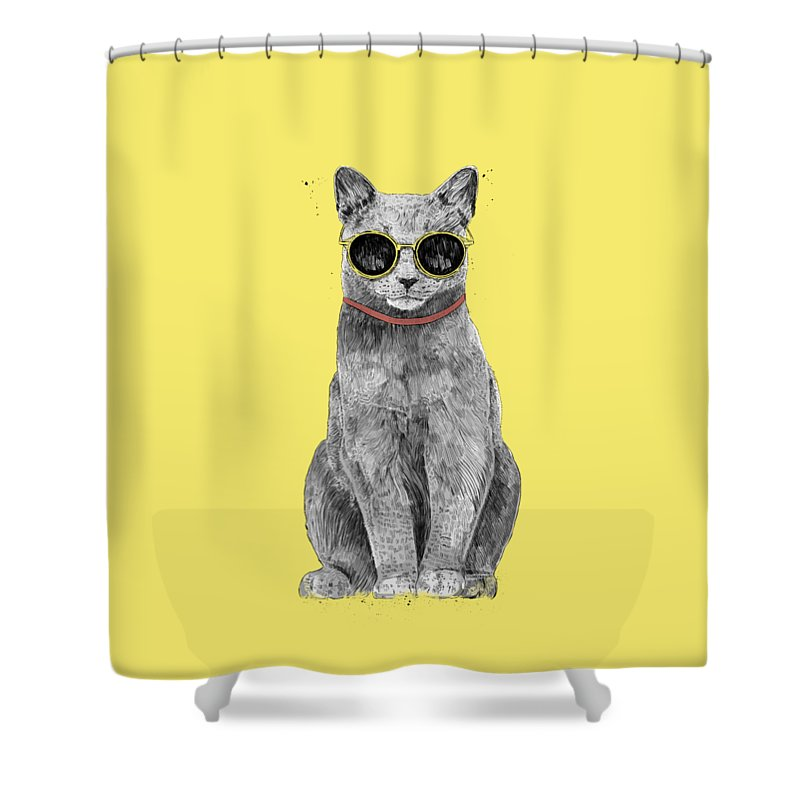 Kittens Cool Shower Curtains