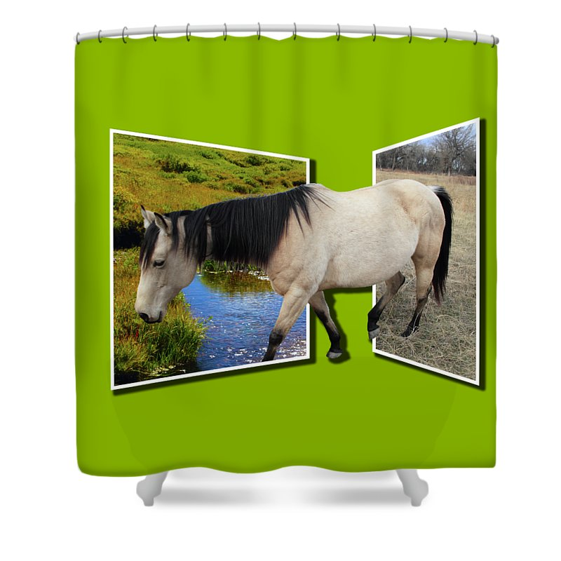 Horse Shower Curtain featuring the photograph The Grass Is Always Greener On The Other Side by Shane Bechler