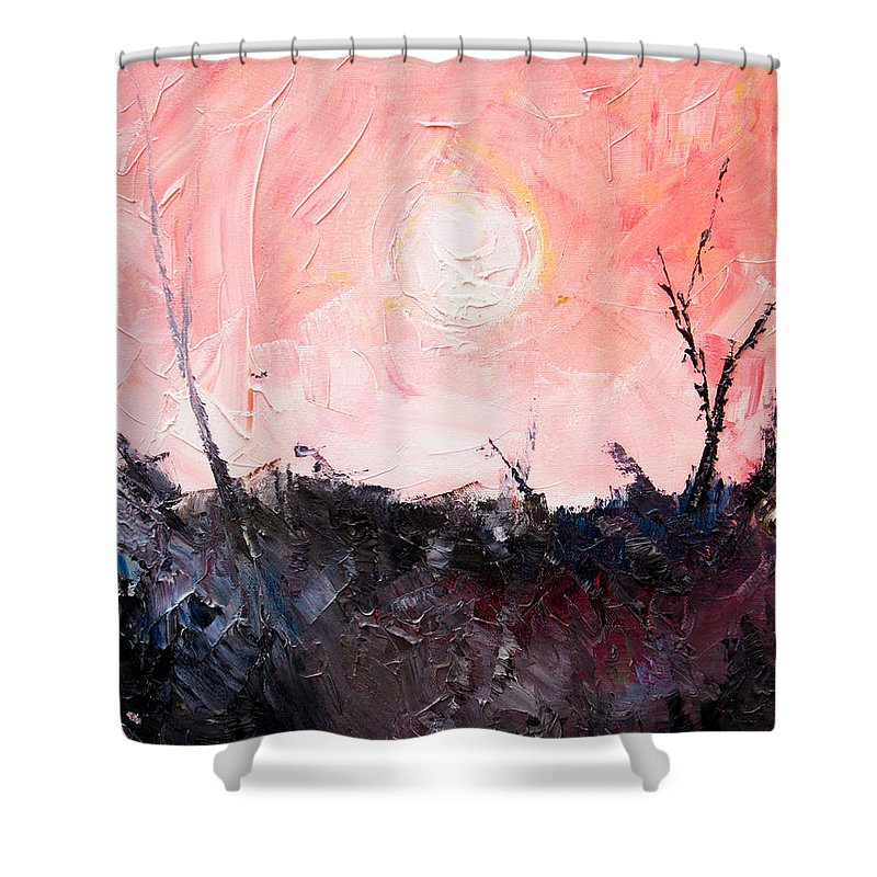 Duck Shower Curtain featuring the painting White Sun by Sergey Bezhinets